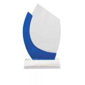 CT 001 crystal trophy Size H-21cm